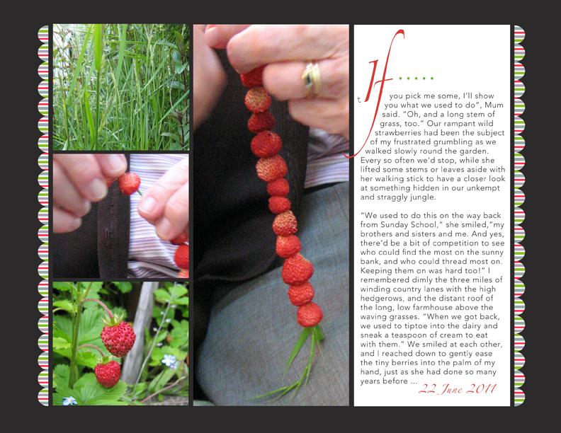 Strawberrysticksweb