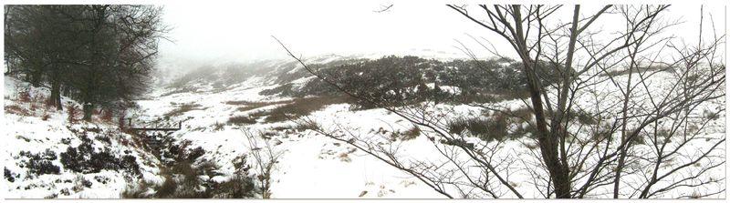 Snowlandscapeweb