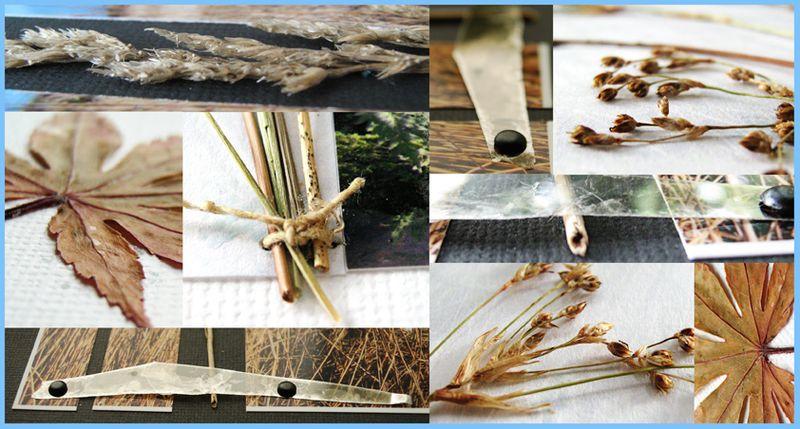 GrassdetailwebB
